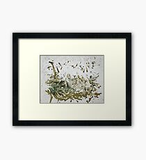 Sounds of the Nature Framed Print