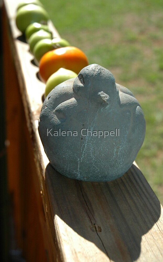 Tomatoes for Babies by Kalena Chappell
