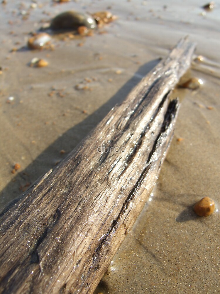Drift wood by duroo