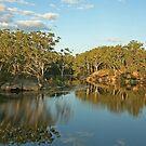Lake Parramatta by Richard  Windeyer