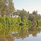 Macquarie River by Richard  Windeyer
