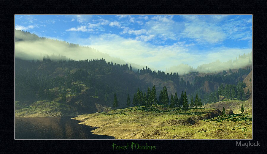 Forest Meadows by Maylock