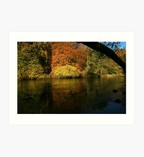 natures framing of reflections Art Print