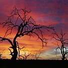 Mystic Sunset by caroline ellis