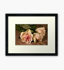 Bouquet three roses Framed Print
