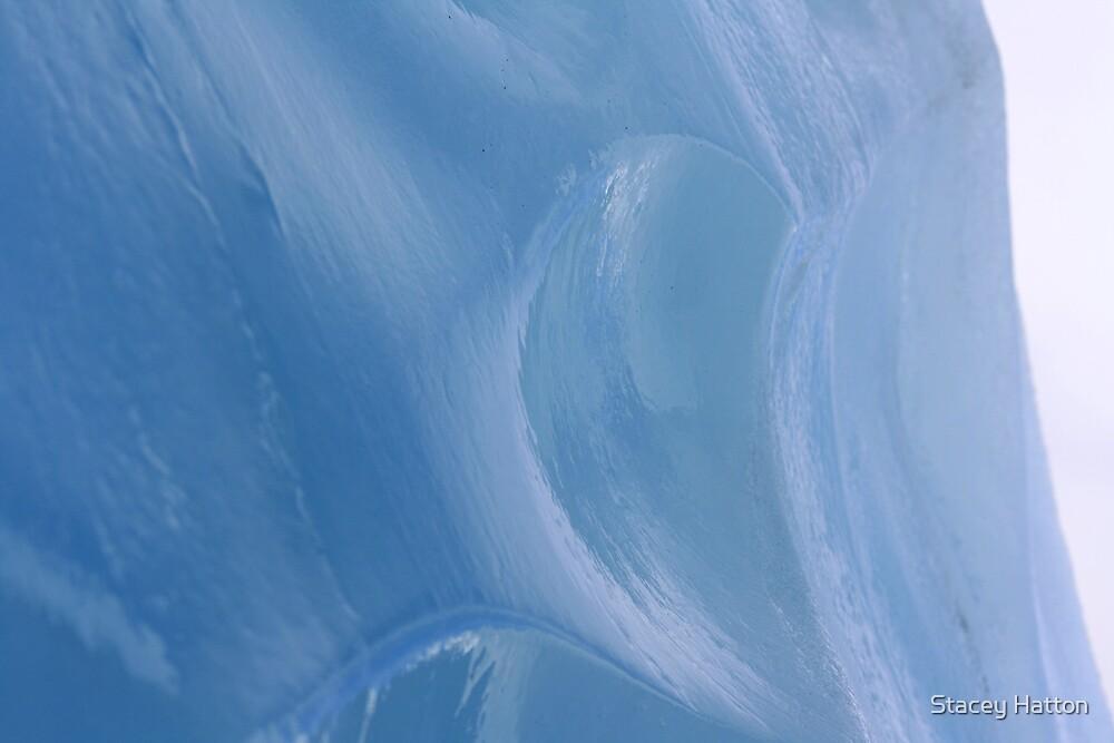 Frozen Wave by Stacey Hatton
