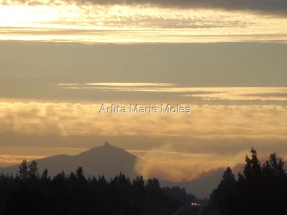 Black Butte Fire Scene 2007  by Arlita Marie Moles
