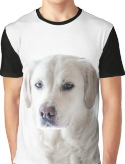 Golden Retriever Photo | Dogs Graphic T-Shirt