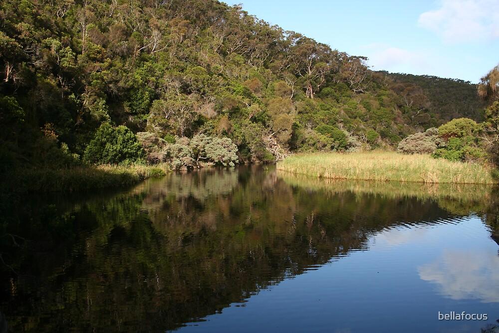 River Bend by bellafocus
