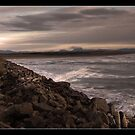 South Jetty by Brian Puhl IPA