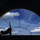 Stretch by Jan Cartwright