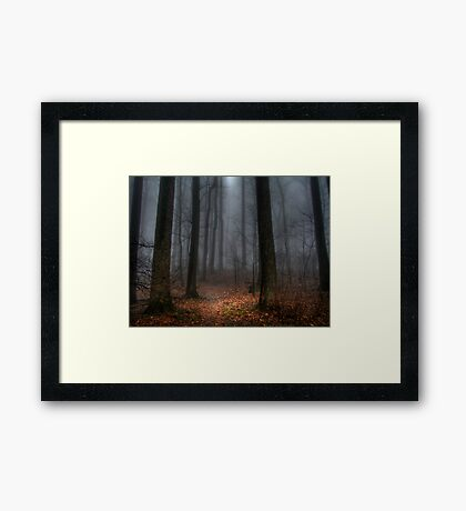 Misty Path to Flat Top Mountain Framed Print