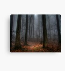 Misty Path to Flat Top Mountain Canvas Print