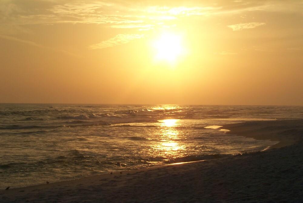 Golden Sunset by StudioN