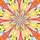 Sun Burst  by Robin Monroe