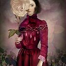 The Intriguer by Catrin Welz-Stein