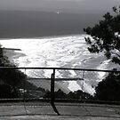Noosa from the Lookout by Virginia McGowan