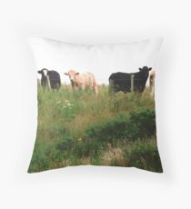 Curious Cows, Inch Island, Donegal, Ireland Throw Pillow