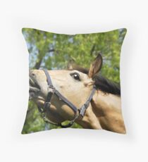 What aroused horses do Throw Pillow