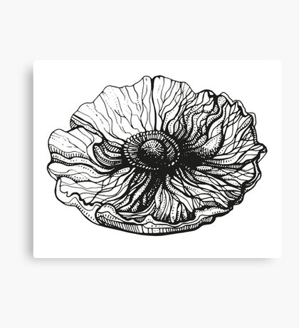 poppy graphic spring design nature illustration flower bw Canvas Print