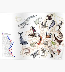 Endangered Animals of Europe  Poster