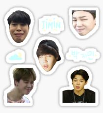 BTS JIMIN - Sticker Sheet Sticker