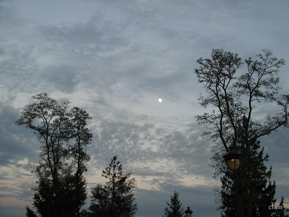 Pennsylvania Moon, Early Evening by cfam