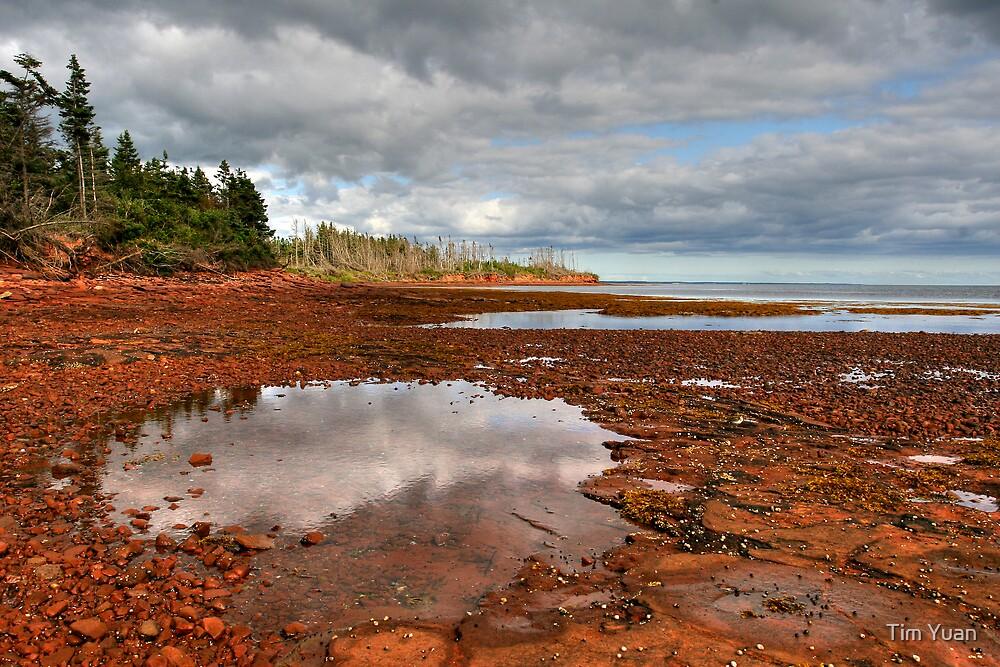 Red Rocks Beach by Tim Yuan