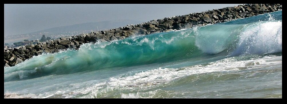 The Wedge. by Melissa  Carroll