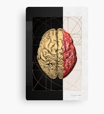 Dualities - Half-Gold Human Brain on Black and White Canvas Canvas Print