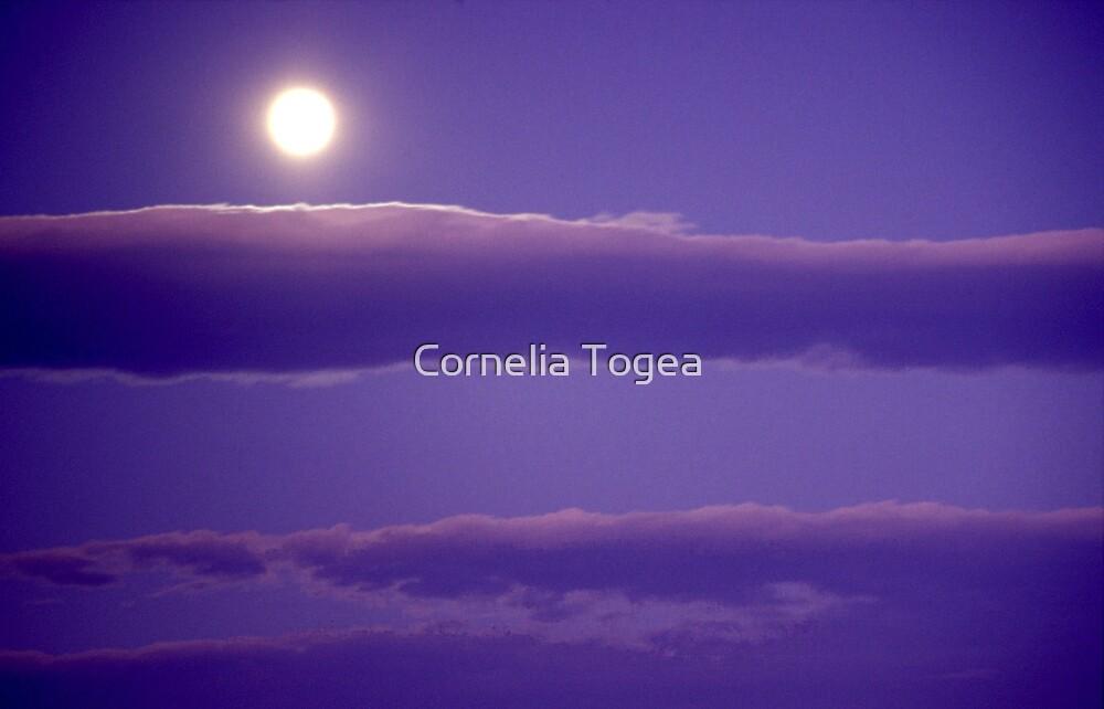 early morning moon by Cornelia Togea