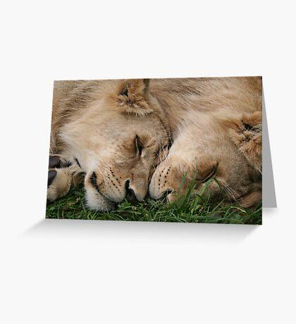 Cub Love Greeting Card