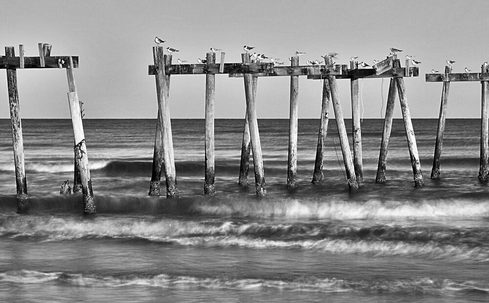 SurfSide by Michael Mancini