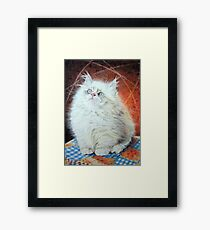 Please sir I want some more Framed Print