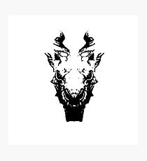 Dragon Skull Photographic Print