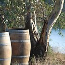 Barrels by Louise Green