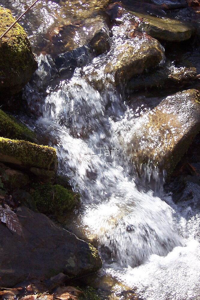 Spring Stream by JLTaft