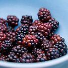 Berries by monicamakesthings