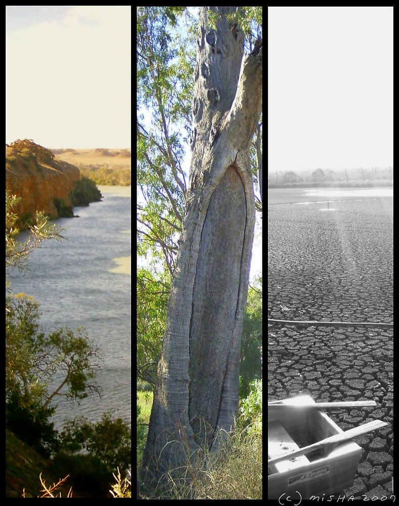 Impressions Along the Murray by DreamingIce