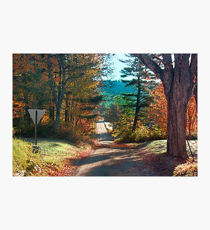 Down A Country Road Photographic Print