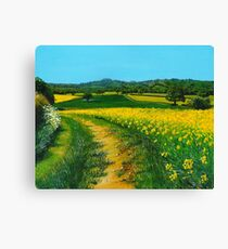 Downland Gold Canvas Print