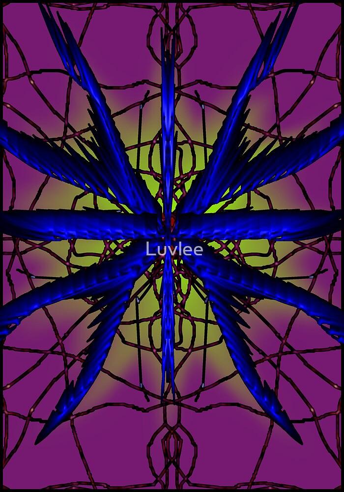 Spider flower by Luvlee