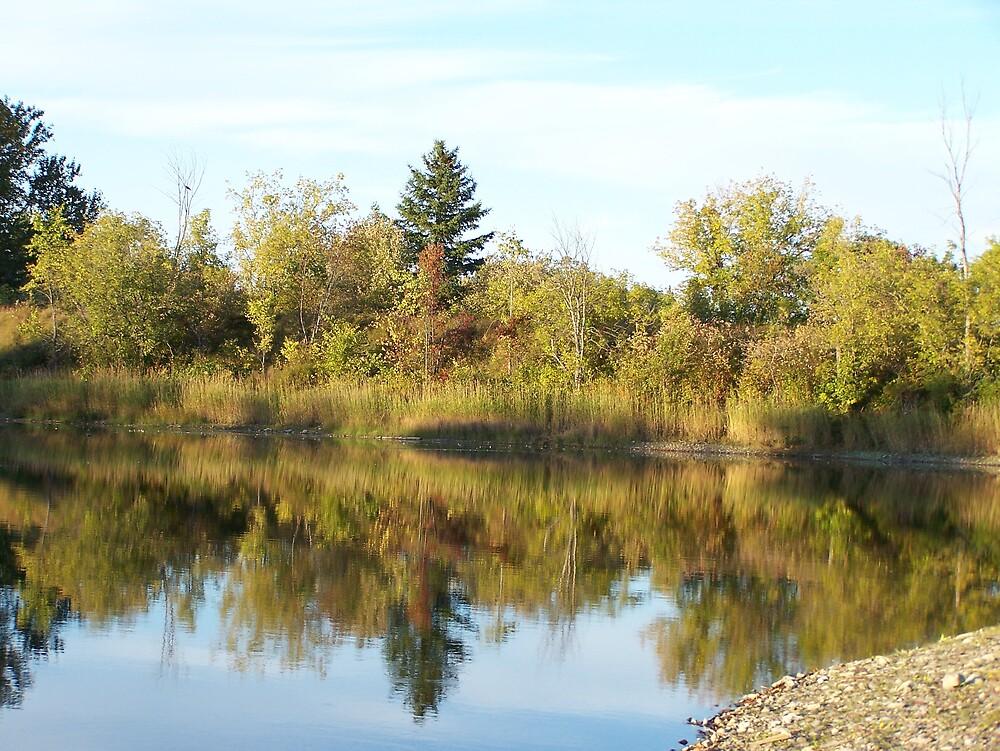 Reflected Autumn by Gene Cyr