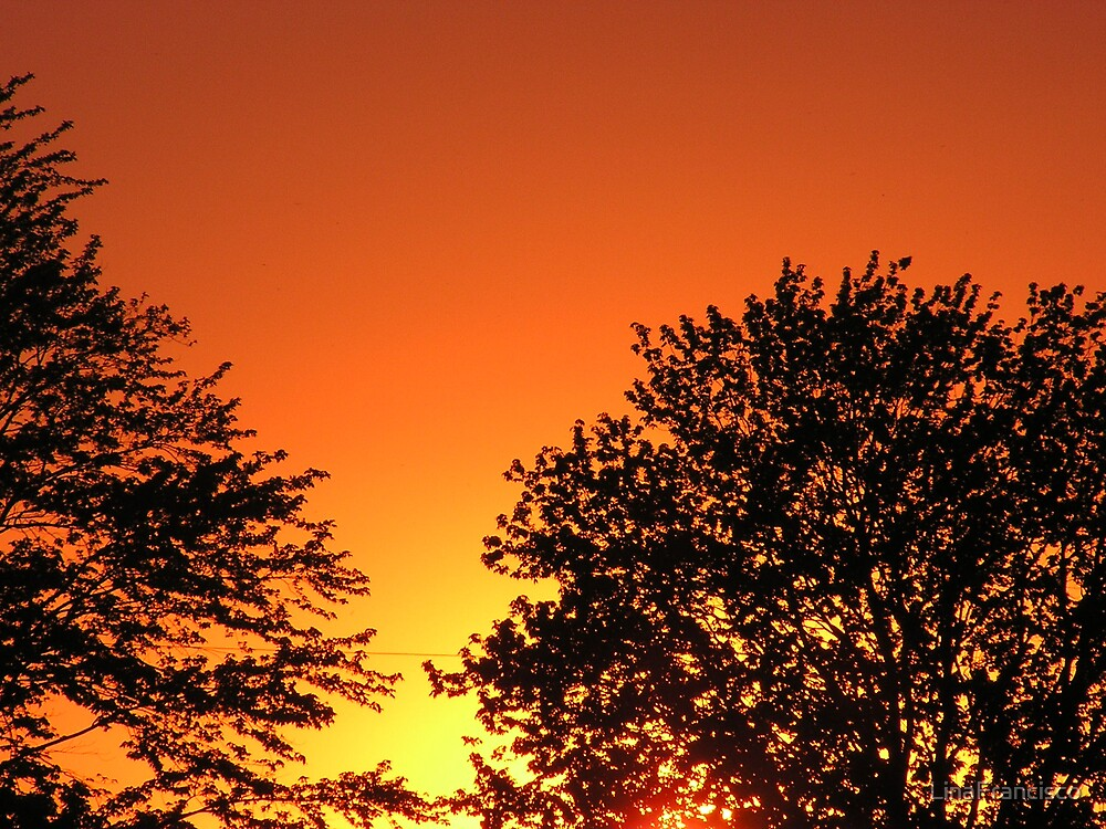 Bruce county sunset by LinaFrancisco