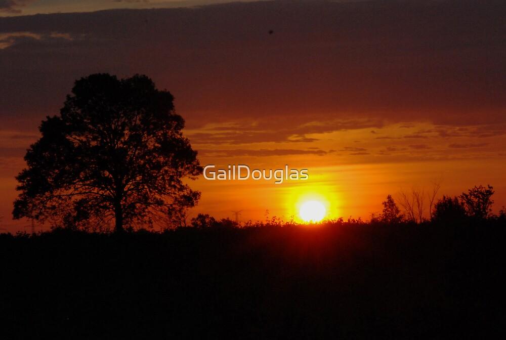 Morning Begins by GailDouglas
