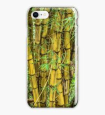 bamboo clump iPhone Case/Skin
