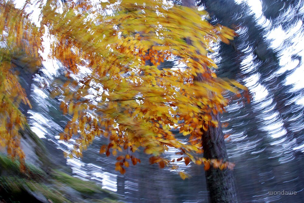 Dynamic Motion of Wind through the forest by wondawe