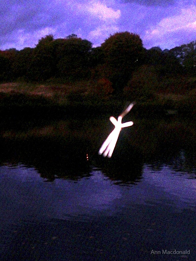 Moth in flight over the lake by Ann Macdonald