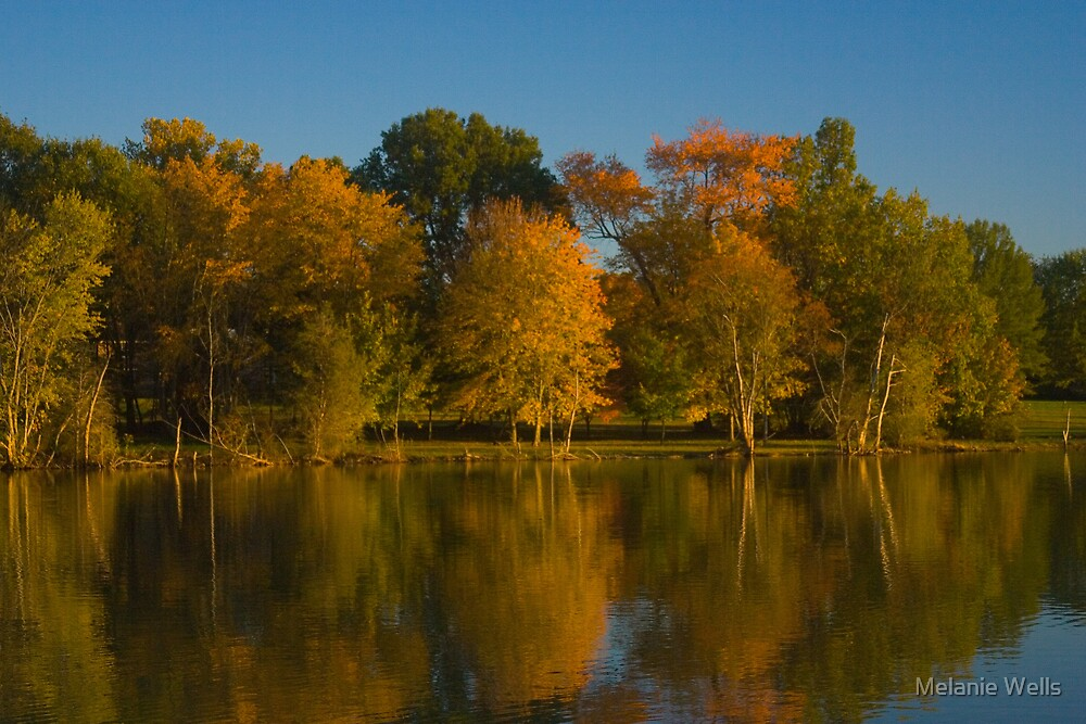 Reflections of Fall by Melanie Wells