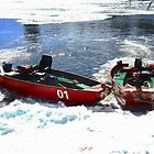 Red Boats in the Rideau River, Ottawa, ON Canada by Shulie1